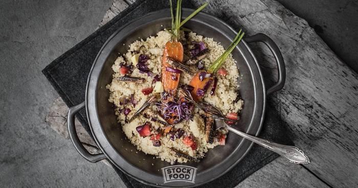 Insekten-Food – Ernährungstrend und Eiweißquelle