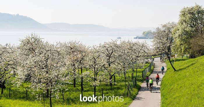 Ab in den Frühling – Unterwegs mit Daniel Schoenen
